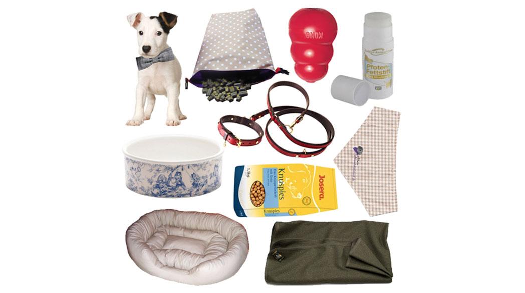 Unsere Geschenkideen für den Hund