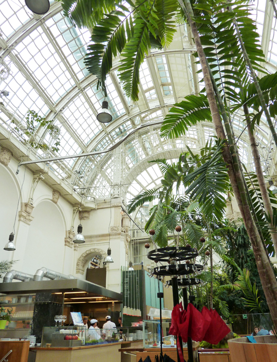 Palmenhaus 3