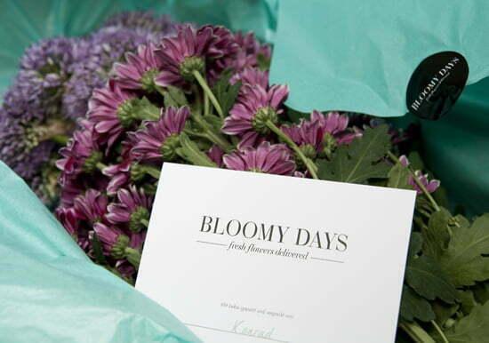 Der Lady Blog Testet Blumchen Von Bloomy Days
