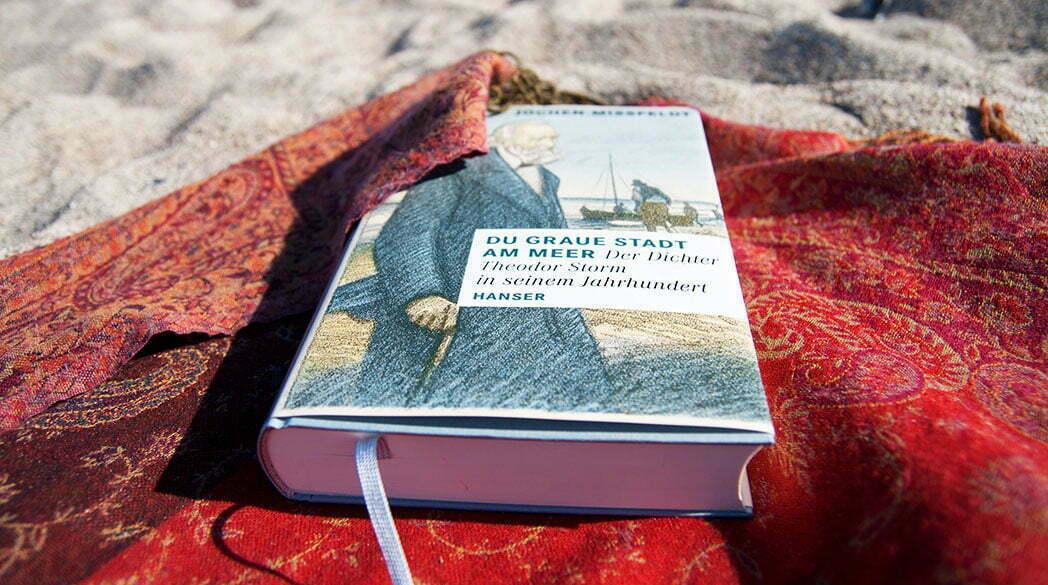 Theodor Storm Biografie: Du Graue Stadt am Meer