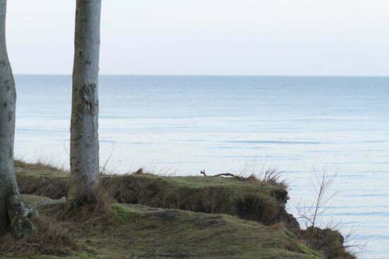 Winterurlaub an der Ostsee: Kühlungsborn