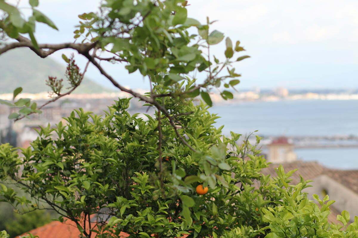 Der Lady-Blog auf Reisen: 1 Monat Italien