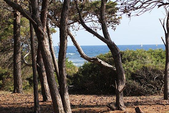 Wanderung zur Punta Licosa