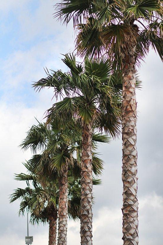 Unsere Tipps für einen Tag in Salerno