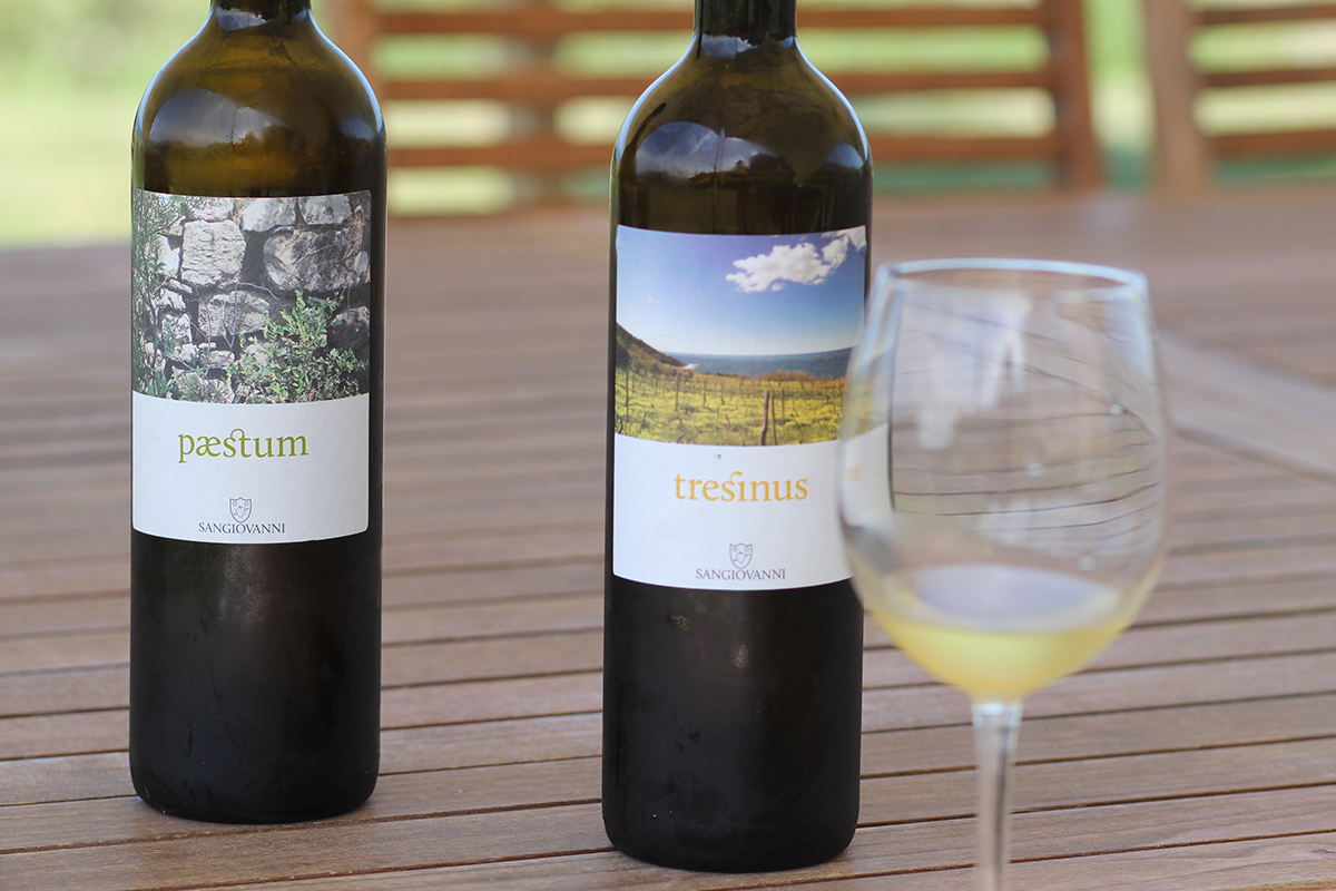 Der Lady-Blog auf Reisen: Weingut SANGIOVANNI