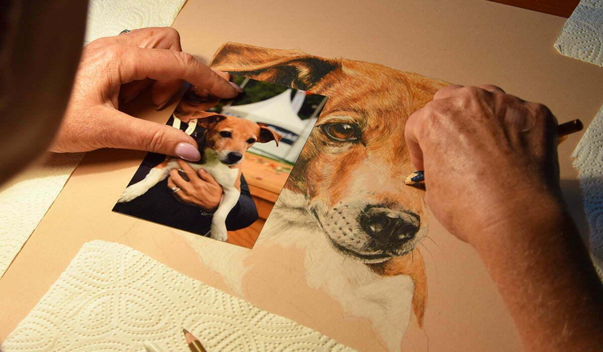 Tierportraits, die das Herz berühren
