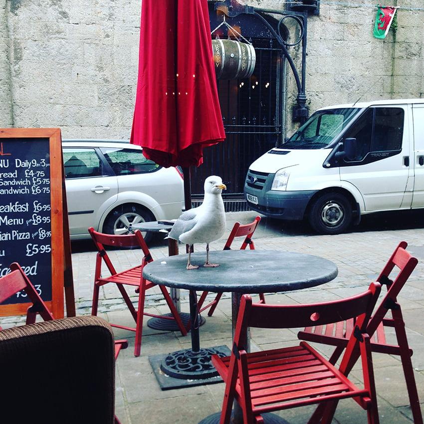 Caernarfon Tipps: Restaurant Wal