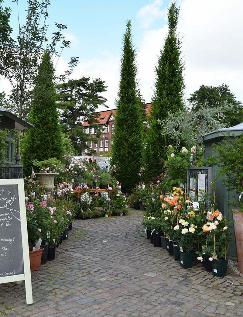 Die königliche Gartenakademie in Berlin