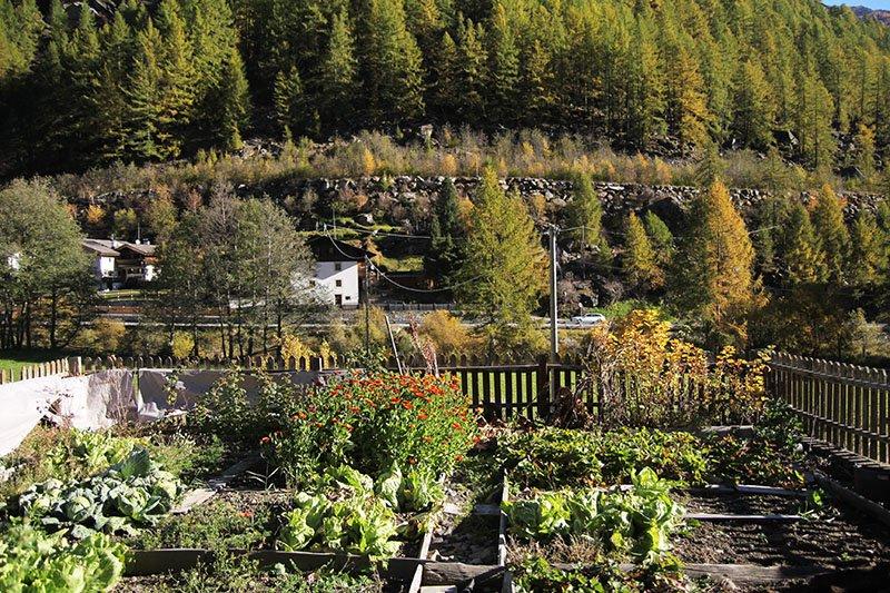 Alter Bauerngarten der Alpin-Lodge Josephus im Schnalstal