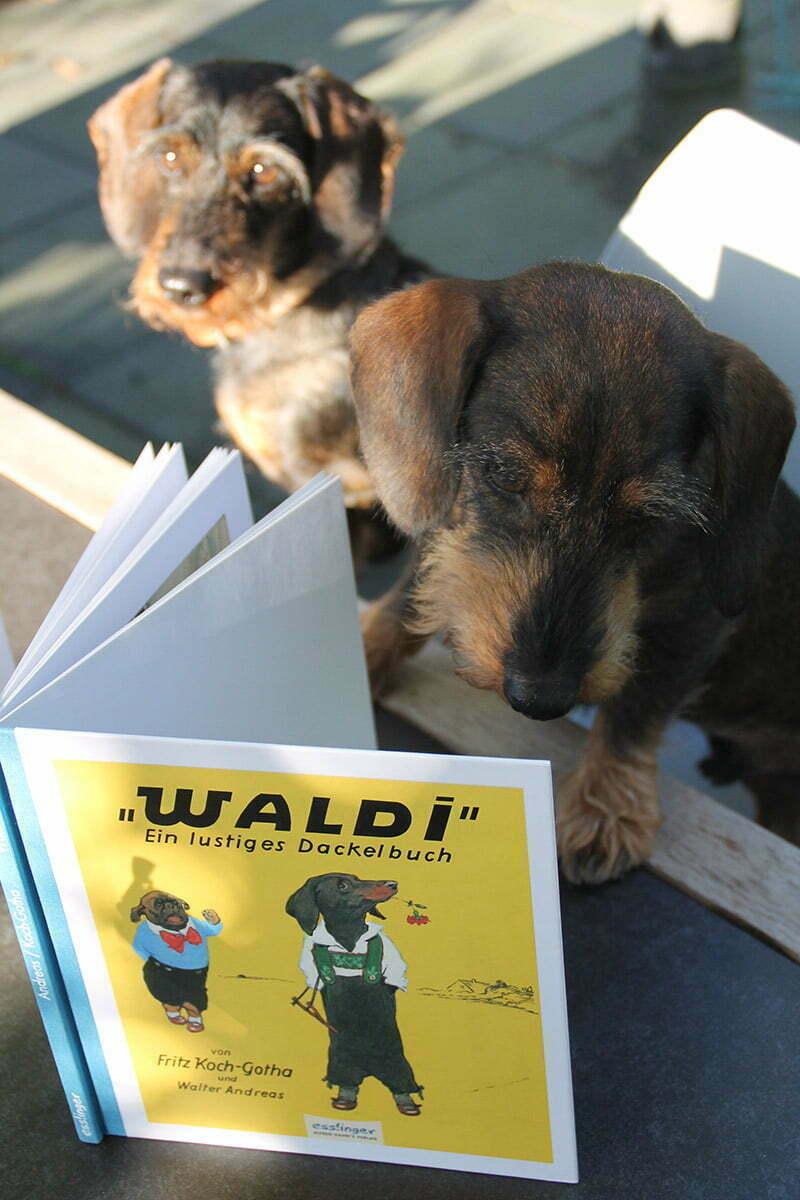 """""""Waldi"""" - Ein lustiges Dackelbuch"""