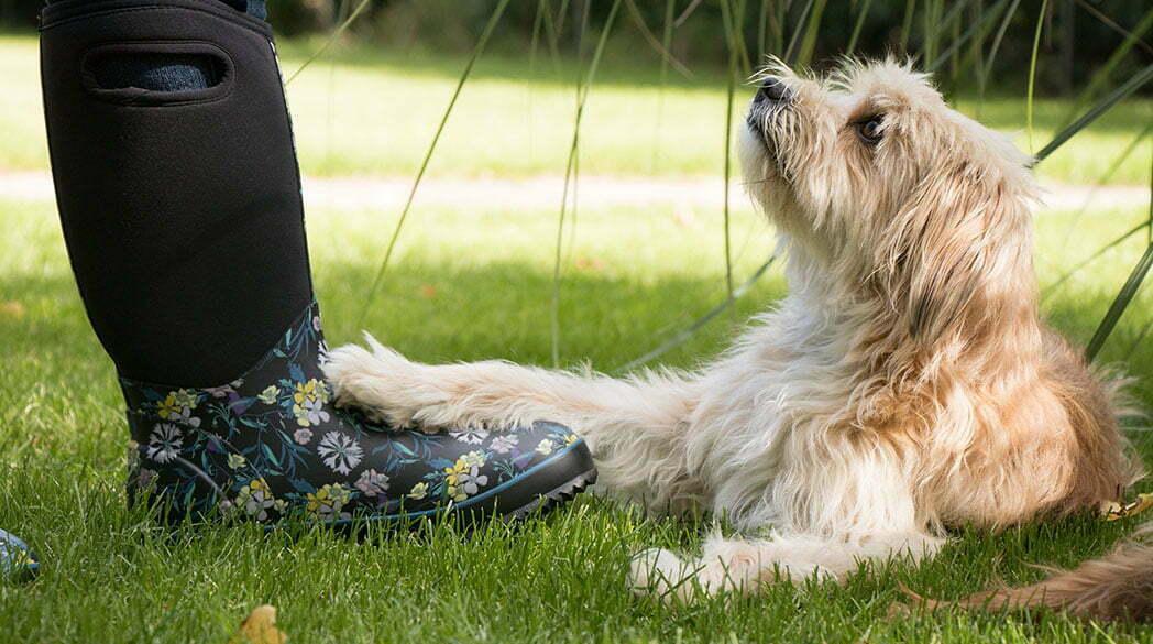 Neoprenstiefel von Two Tracks: Ideal für den Hundespaziergang