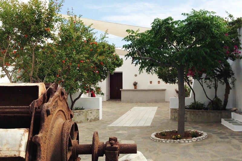 Weingut Moraitis auf Paros