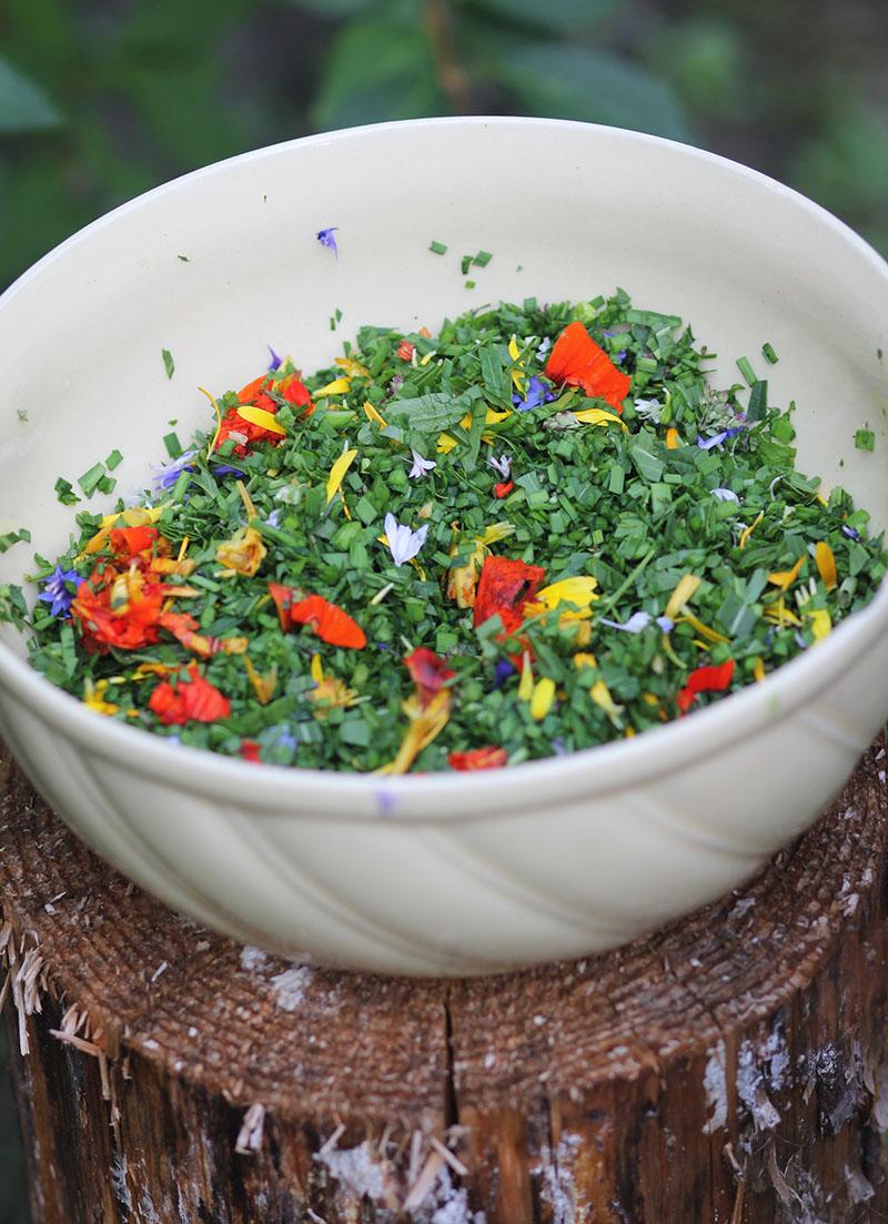 Zero Waste Frischkäse mit Kräutern & Blüten