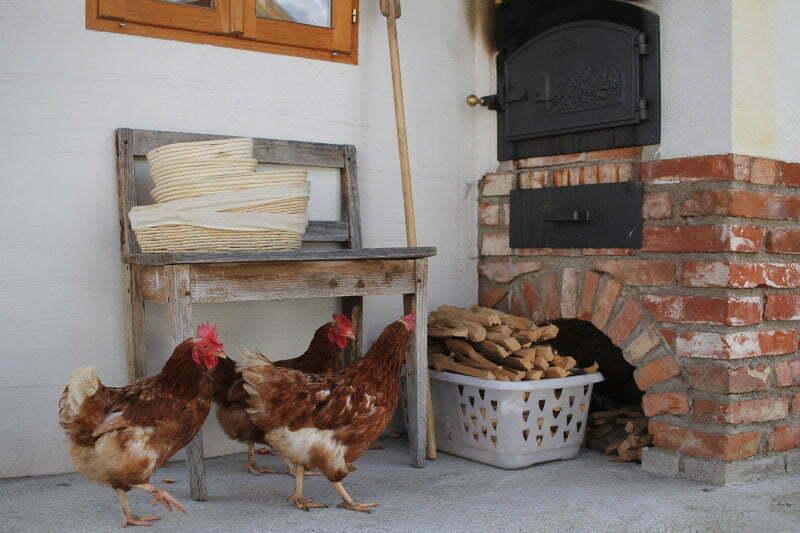 Wastlbauer Mattsee: Urlaub auf dem Bauernhof