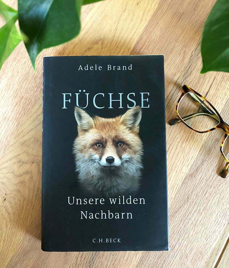 Adele Brand: Füchse – Unsere Wilden Nachbarn