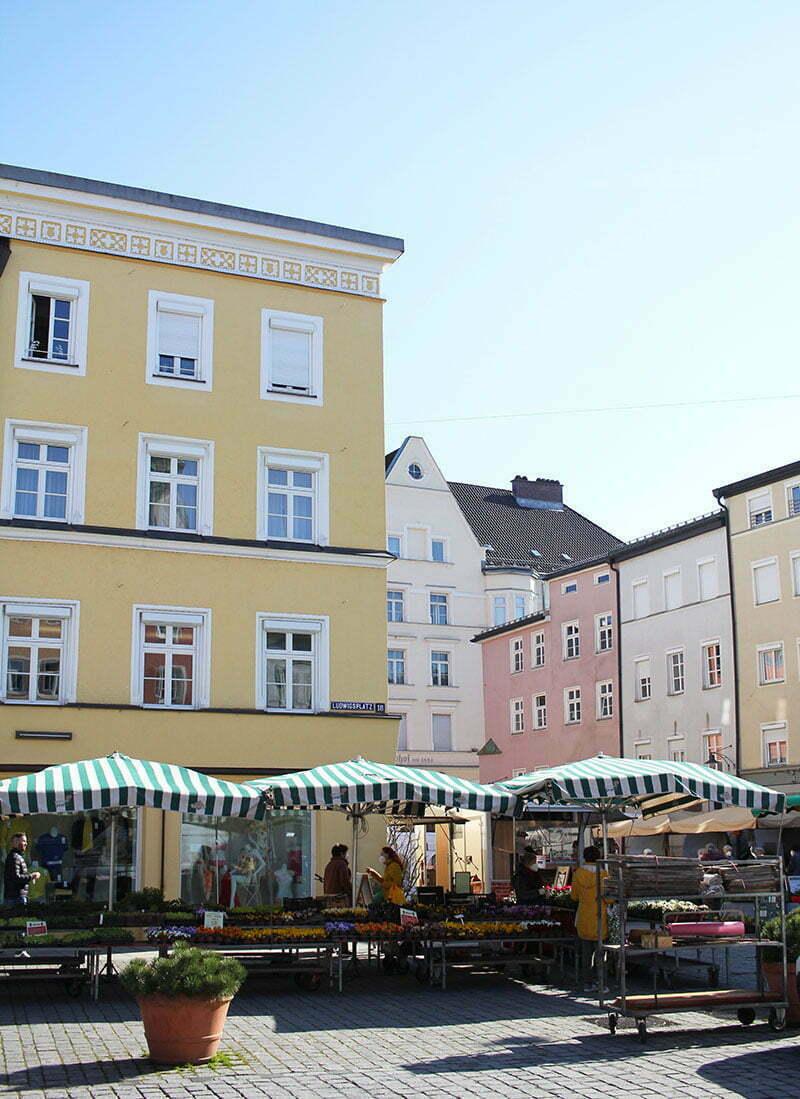 Rosenheim-Tipps: Grüner Markt am Donnerstag