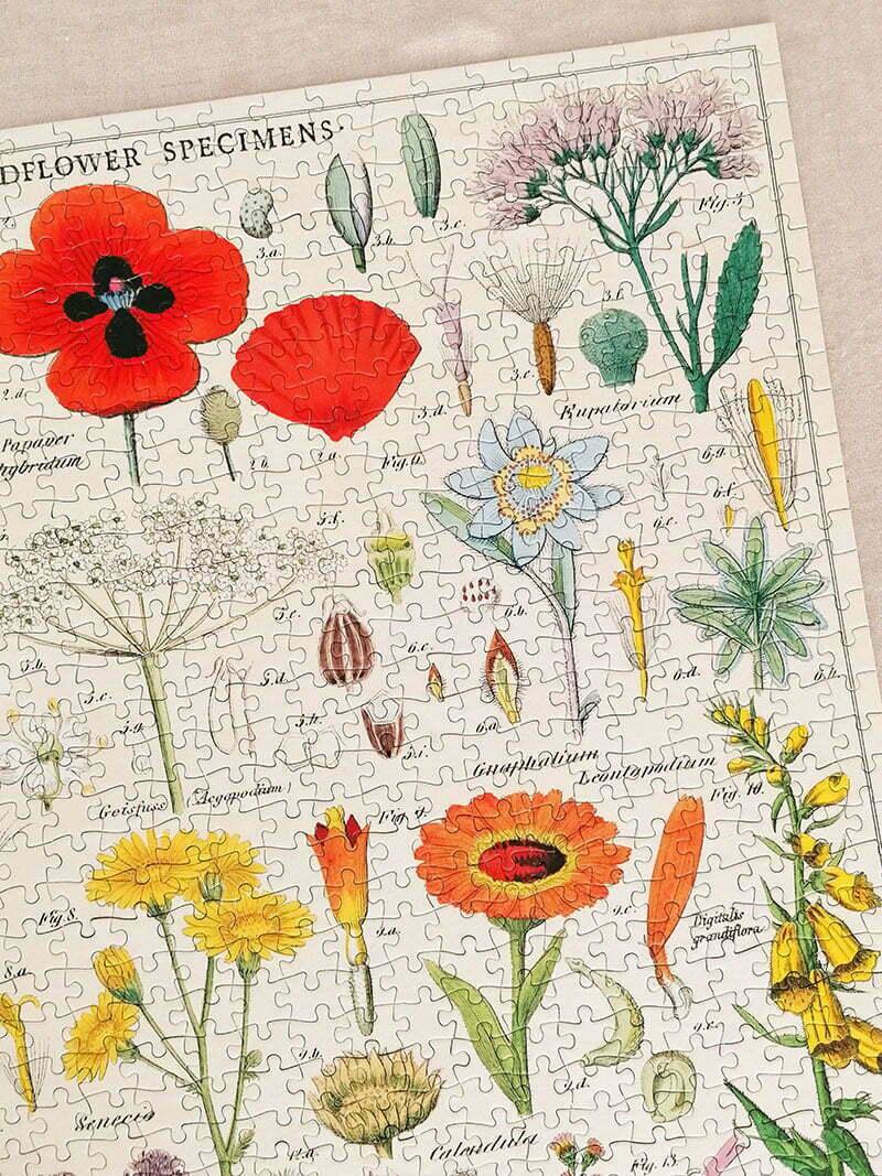 Mein Wildflowers Puzzle von Cavallini Papers & Co