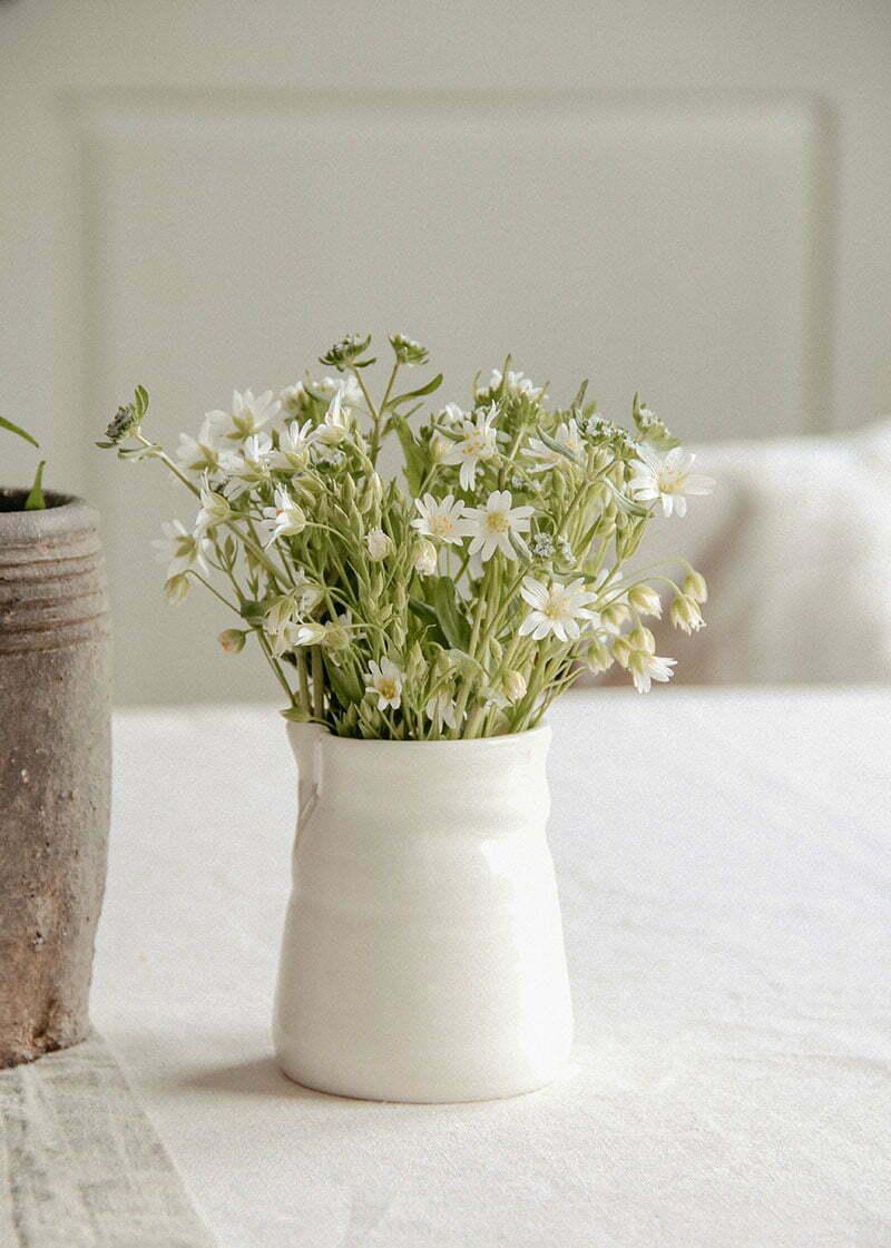 Diese Blumen passen zum minimalistischen Wohnstil