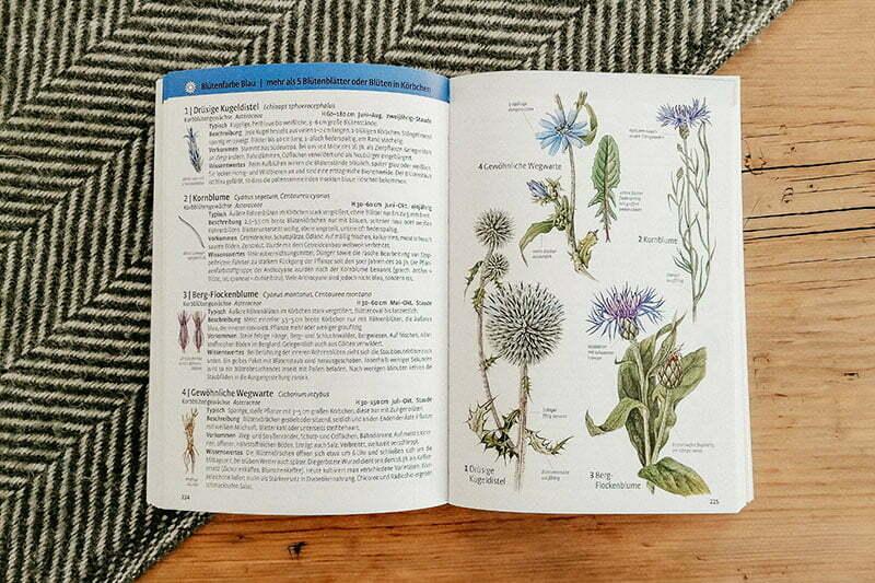 Pflanzen bestimmen: Was blüht denn da? Kosmos-Verlag