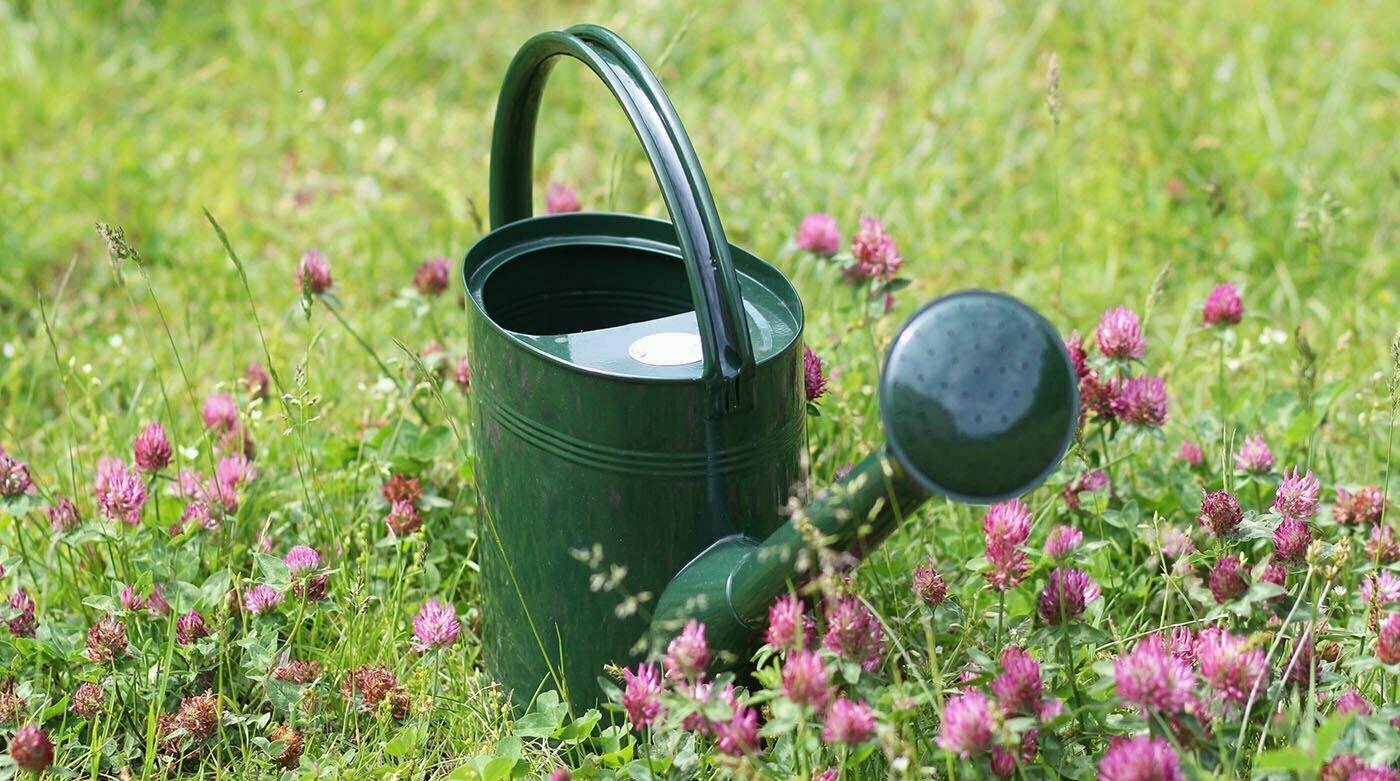 Englische Gartengeräte: Werkzeuge für ein ganzes Leben
