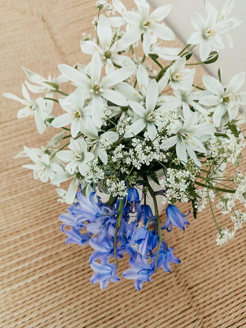 Wildblumenstrauß mit Wiesenkerbel